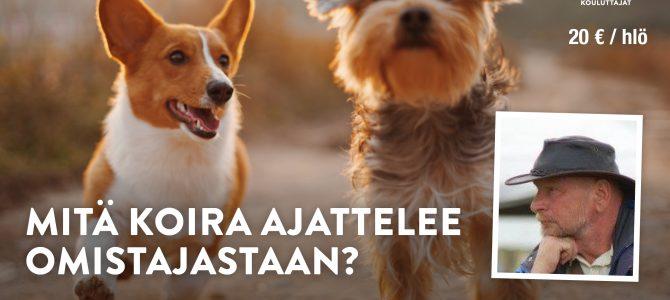 Pertti Vilander ja Pevi-kouluttajat Ravijoella 2.–4.8.2019